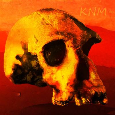 knm-er_1813