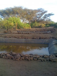 Fish ponds at TBI-Turkwel.