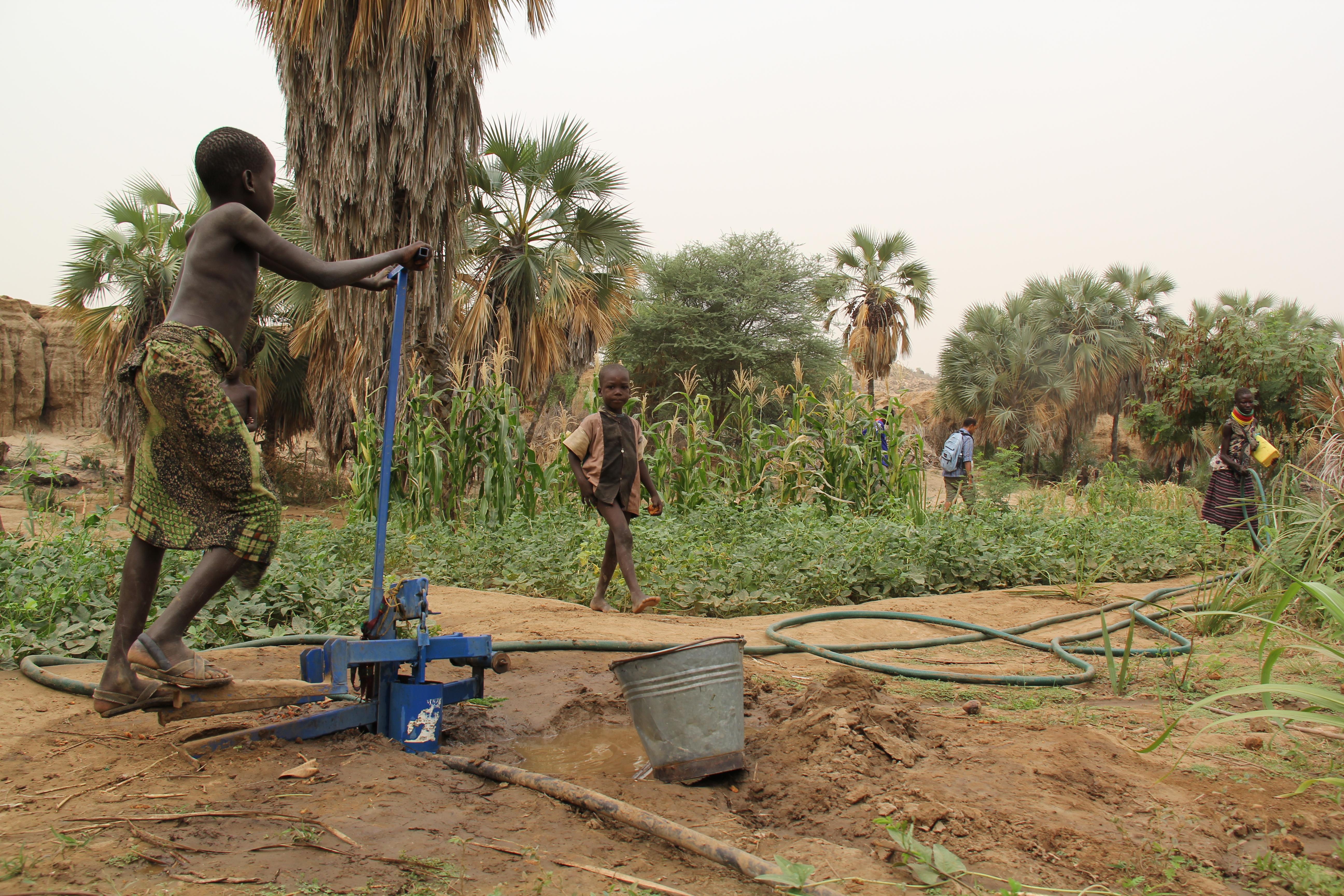 How does your garden grow? | Turkana Basin Institute