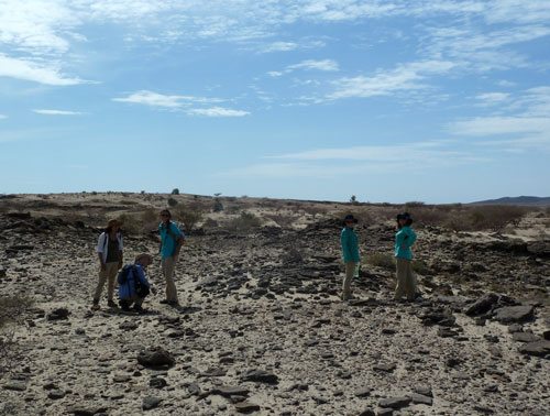'Visiting' the Pleistocene!