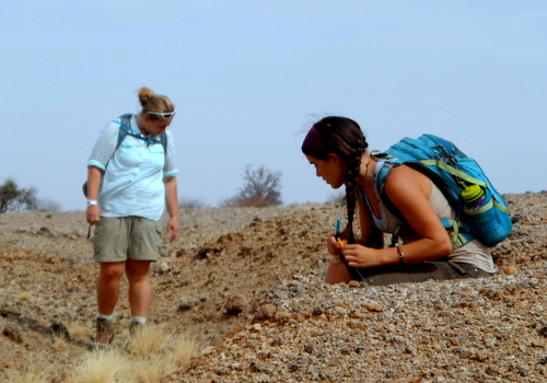 Kathleen and Luisa scan the ground for fossils
