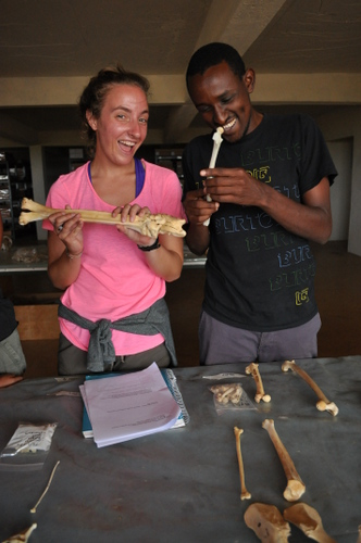 Later, Sarah and Abdi compare hind-limbs of different species.