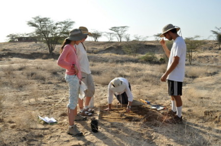 Lauren, Janina, Angela and Rob start excavating their square.