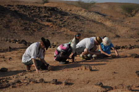 The students and Dr. Skinner start a hillcrawl near where the teeth were found.