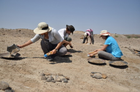 At the radius site, Angela, Kate and Erica start sweeping and collecting the surface sediment.