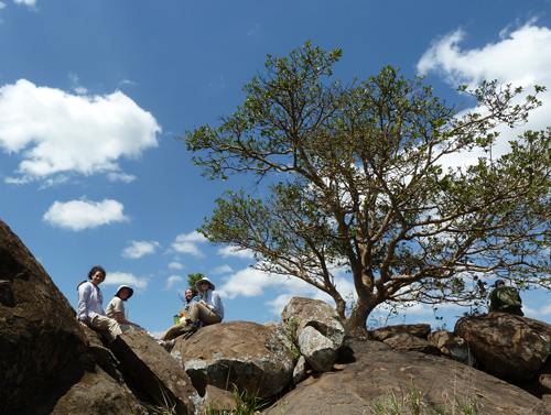 Among the figs on the summit of Mukenya