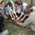 Hands-on lessons in ecology!