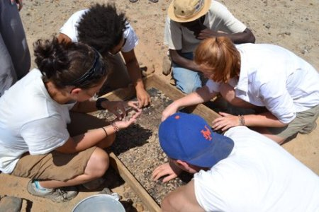 Students search through the sieved sediment for fossil fragments.