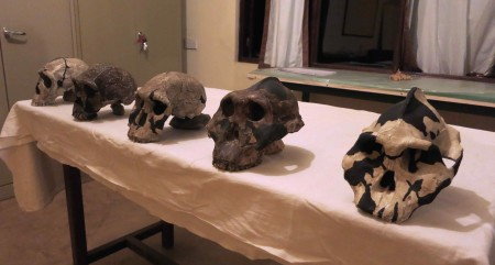 Understanding the evolution of our ancestors in the Turkana Basin.