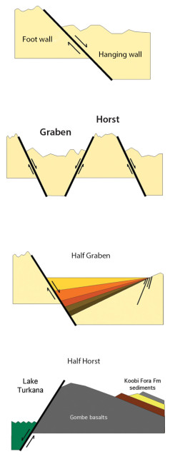Normal Fault structures that are common in the Turkana Basin. Figure from Feibel 2011.