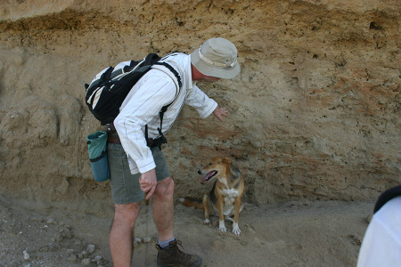 Dr. Feibel points out cross-bedding within the nearly 3.5 million year old sand deposit.