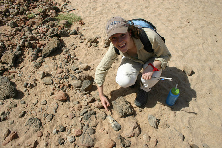 Anna finds a fossil!