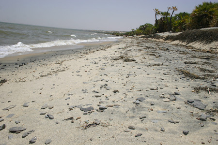 Lake Turkana shoreline north of Eliye Springs.  Older rock beds in this area  (not shown) have weathered out and eventually formed Flat pebbles. Overtime they will also turn into sand.