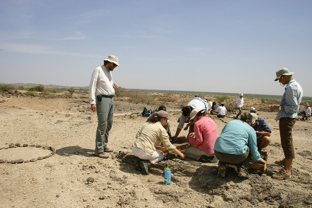 Dr. Fortelius and Dr. Leakey double-check possible fossil fragments that the students find.