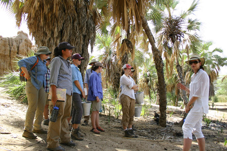 Dr. Harmand introduces students to their first task of acquiring nuts from the doum palm trees.