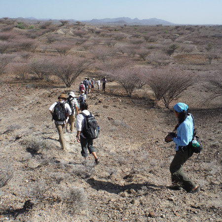 On our way to the first of several Kokiselei sites with Acheulean artifacts. Again, we walk in line to make sure we don't step on any artifacts or bones.