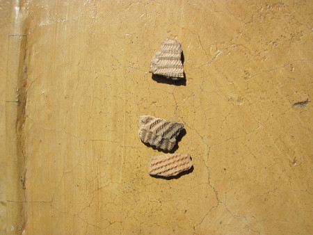 Unlike the undecorated pottery @ Napeget, older pottery at Kabua/Kalokol (xxxx) and Lothagam have a wavy-line design. This image is from artifacts at TBI that had been collected from previous excavations. For more information on this, read Robbins 1980 and recent research by Beyin 2014.