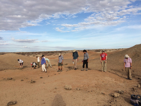 Field School students move slowly across the screened area where hominid teeth has been found by Dr. Meave Leakey's fossil team.