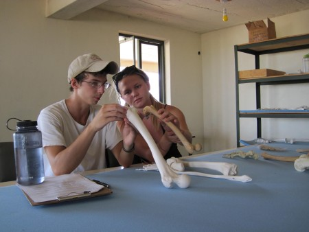 Dylan and Rachel compare the joints of two different species.