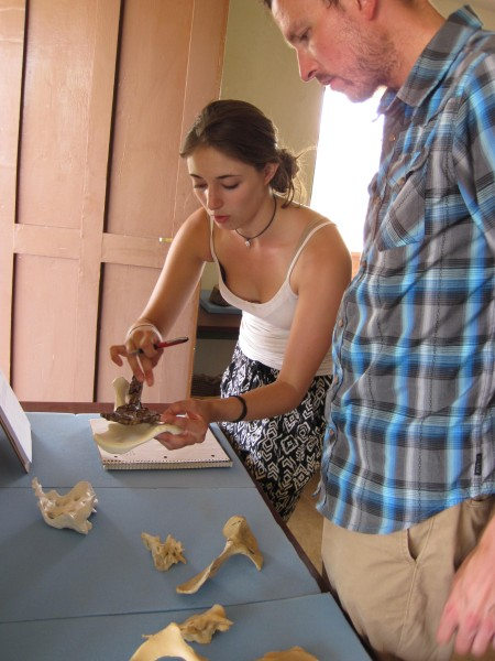 Larisa and Mike examine the differences between bones of two species
