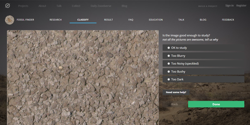 New website enables online fossil hunting