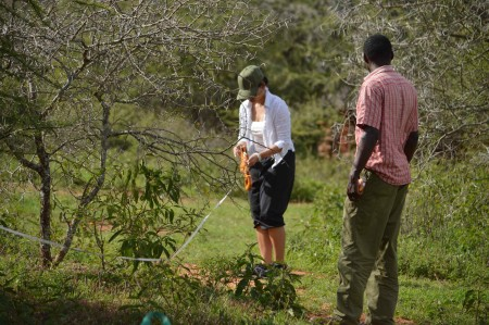 Mr. Ndung'u instructs student Adriadne how to lay the measuring tape for a transect (Photo by Martha N. Mutiso).