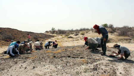 The students split into two teams that will slowly crawl over the hill, removing unwanted rocks and debris.