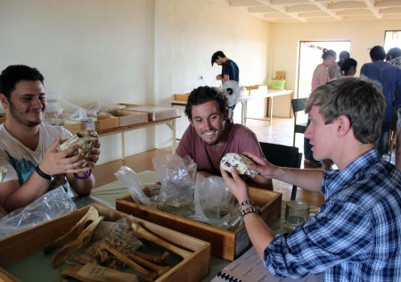 Max, Jamie and Rob check out some carnivore skulls.