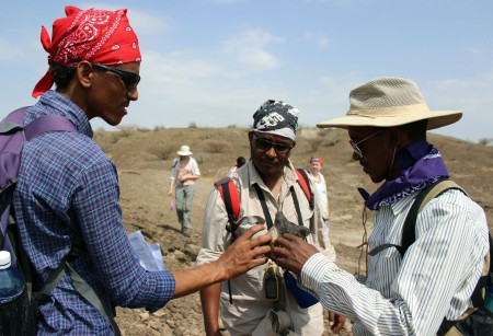 Niguss, Tadele and Yemane discuss a fossil find.