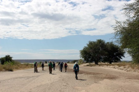 The students follow the laga (dried riverbed) of the Tulu Bor river and enter the delta, seeing fewer and fewer trees.