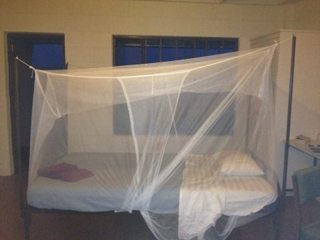 Our beds are covered by mosquito nets for extra protection at night!
