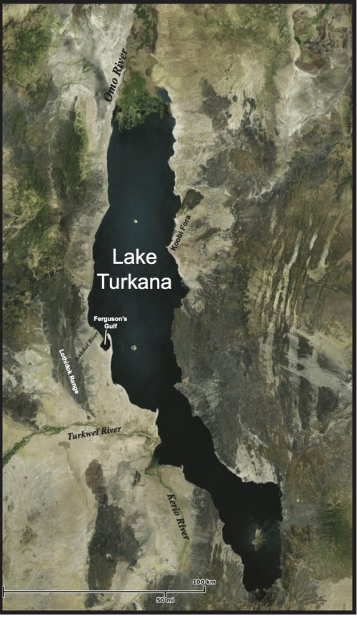laketurkana-copy