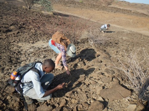 Tobias, Emily, and Jon comb through the sediments as they look for fossils.