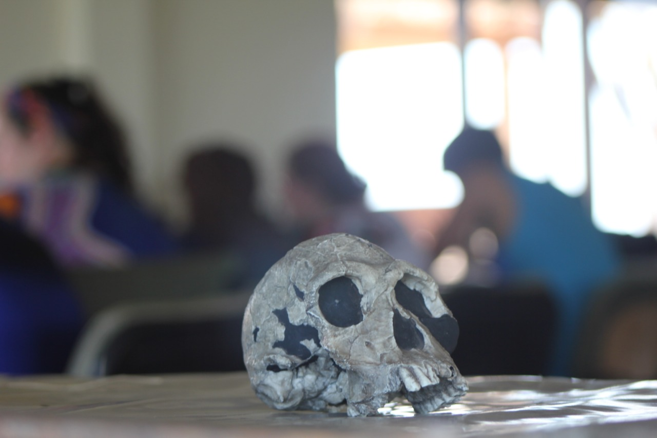 Studying Human Origins with the Origins Field School