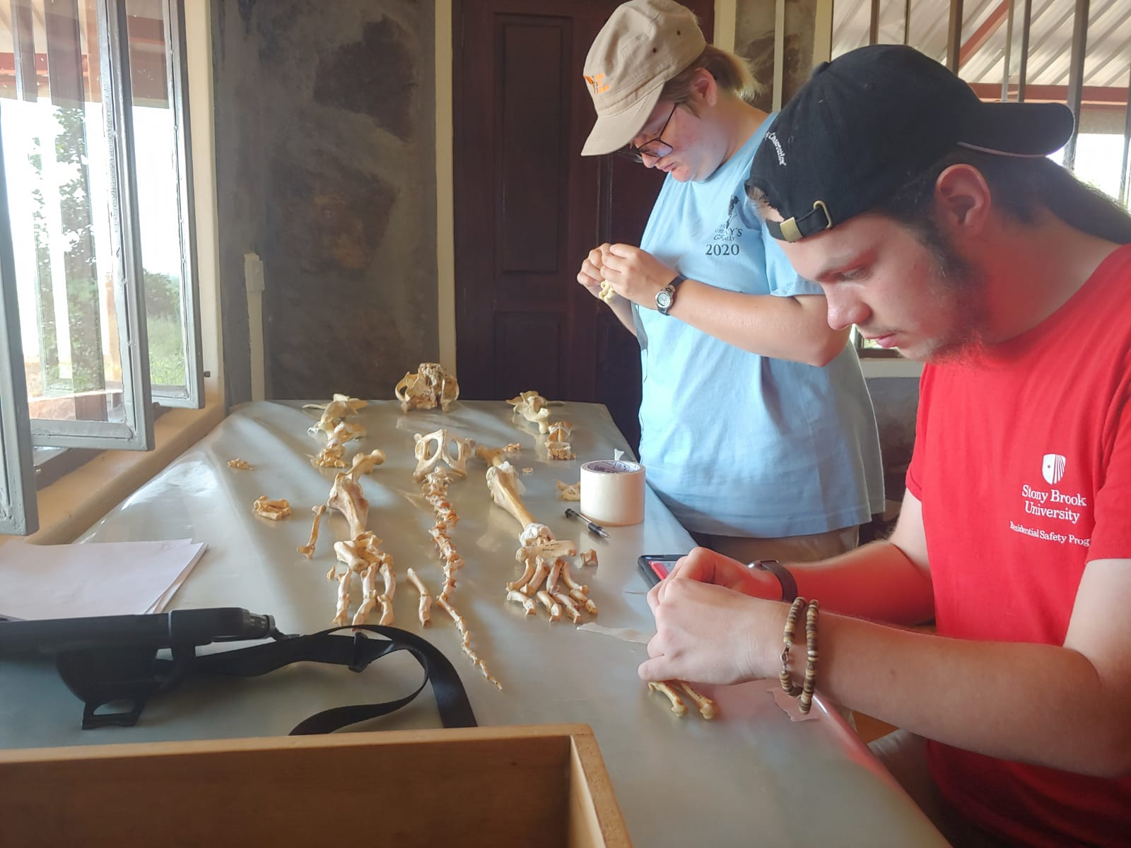 Studying Osteology at the Field School