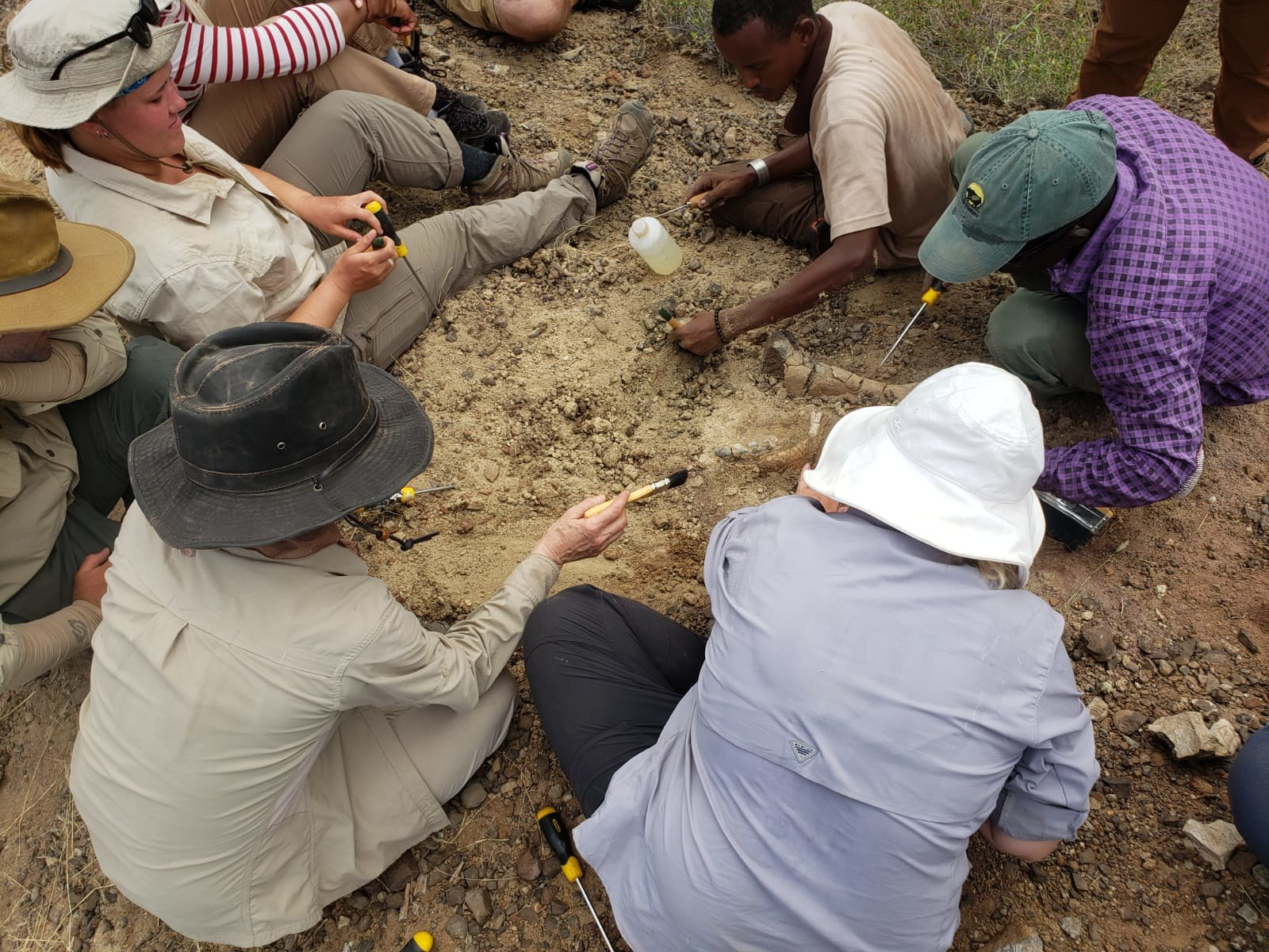 Excavating Fossils at Buluk